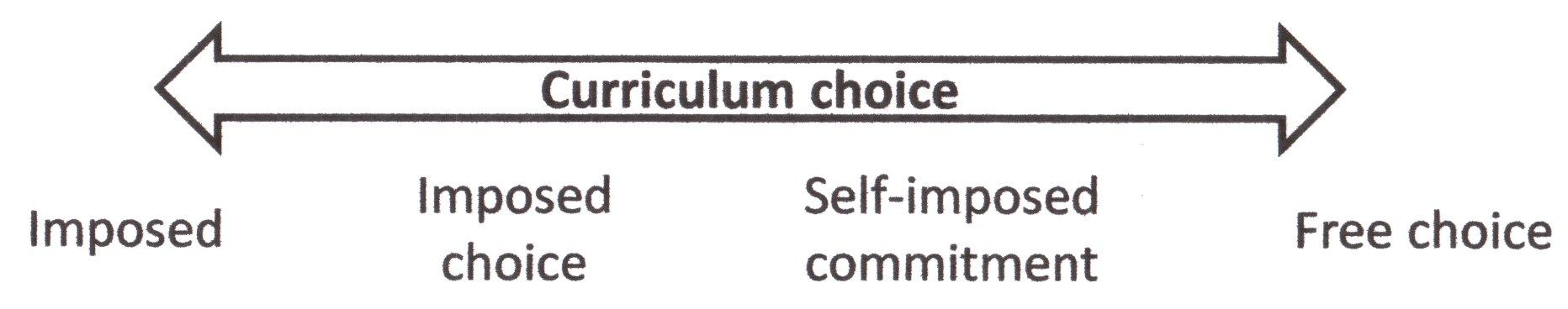 Curriculum choice dimension
