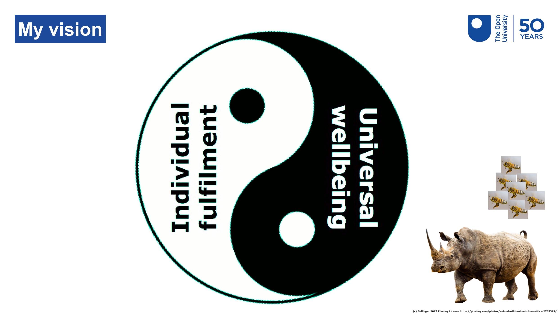 The YinYang Vision
