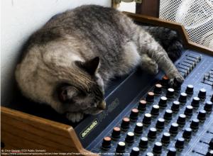 Cat sleeping on a sound mixer